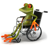Fototapety Grenouille en fauteuil roulant