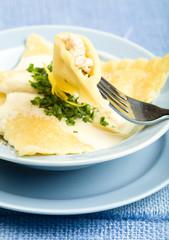 Cut Chicken Ravioli