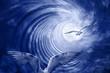 Leinwandbild Motiv Spirale mit Vögel