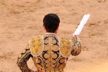 Matador with Bandirillas