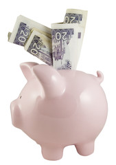 piggy bank and twenty pound notes on white background