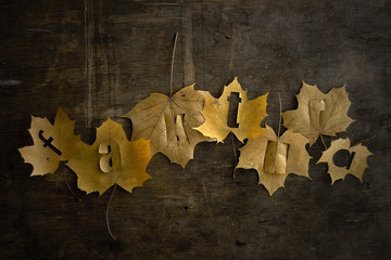 Autumn leaves lying on the wooden invoice
