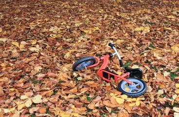 Vergessenes Laufrad im Herbstlaub