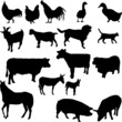 farm animals set - vector