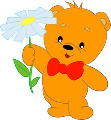bear flower