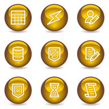 Database web icons, gold glossy series poster
