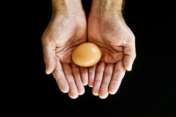 Holding egg
