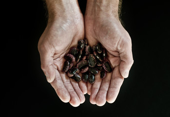 hands holding beans