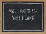 while you teach, you learn poster