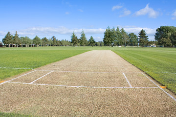 Cricket pitch empty