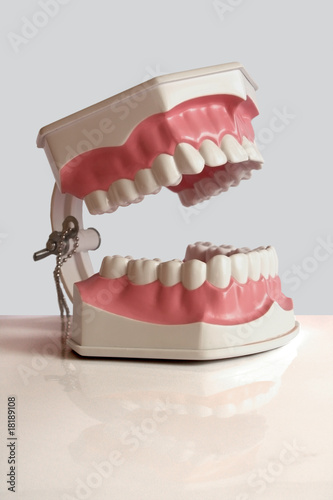 Plastic dental teeth
