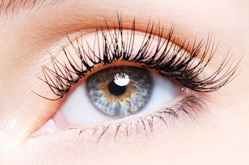 Woman eye with a curl false eyelashes