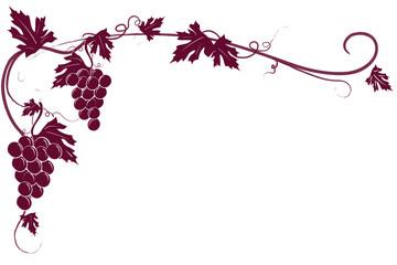 Sfondo tralcio uva rossa