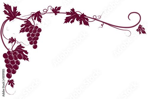 Sfondo tralcio uva rossa © Roberta M.