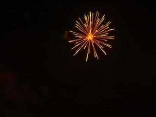 Sunset Floral Firework in Heaton Park 2009