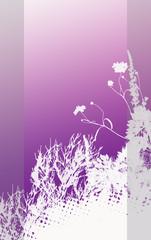 violet brochure