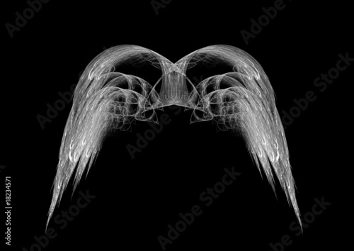 Monochrome Black and White Angel Wings