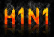 H1N1 swine flu virus name fire