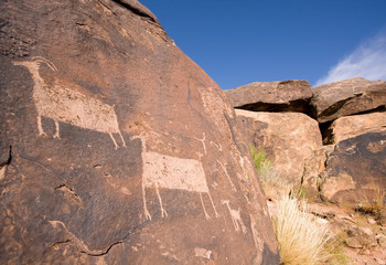 Petroglyphs of Anasazi Canyon