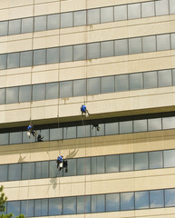Three Window Washers Hanging on Ropes