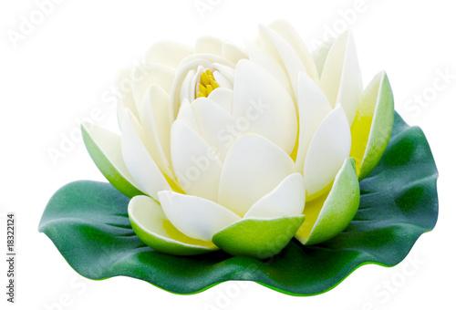Aluminium Water planten Fleur de lotus