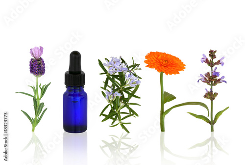 Aromatherapy Herbs and Flowers