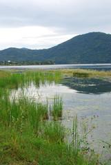 fewa lake wetlands landscape of nepal