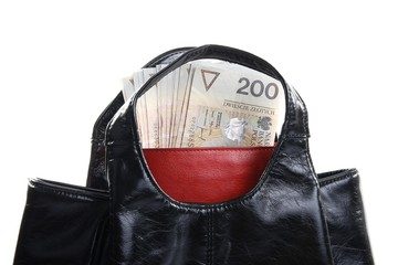 handbag and red wallet with money isolated on white