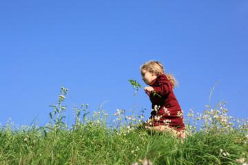 DURCHS GRAS