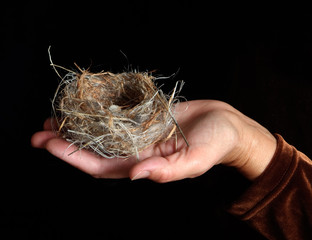 Hand Holding Bird Nest with Egg
