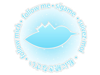 Multilingual follow me texture blue twitter bird badge