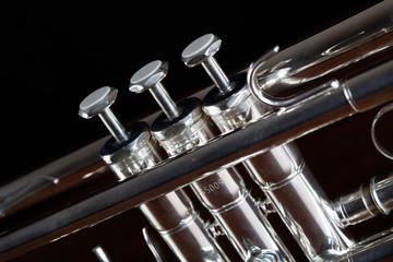 trumpet detail on black