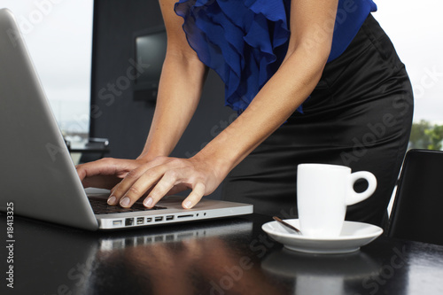 Elegant woman working with her laptop