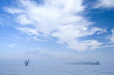 Paesaggio invernale con foschia 3