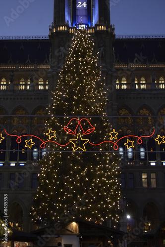 town hall with Christmas tree, Vienna, Austria