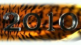 2010 on flag tiger fur
