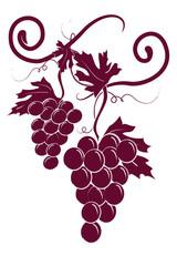 2 grappoli uva