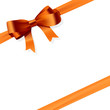 Gift bow. Vector.