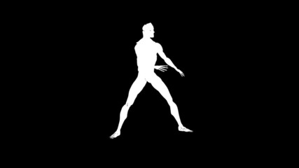 Human musculature karate moves,alpha channel