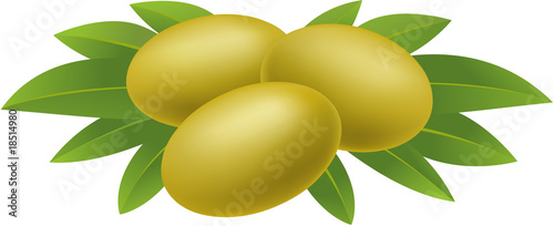 Olives with leaves on white background.