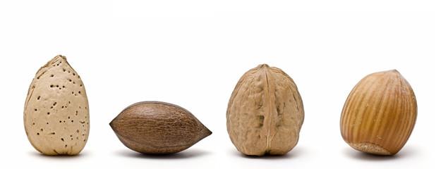 Colección de frutos secos.