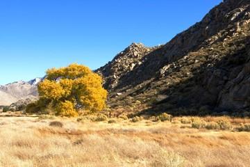 Mountain Valley Autumn