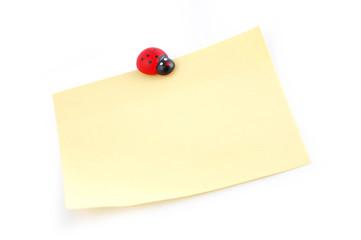 ladybird on a sheet