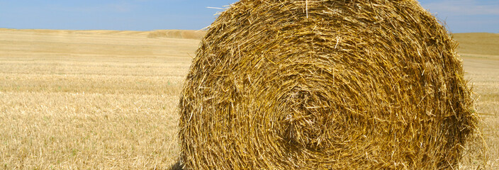 panoramic view of hay bale