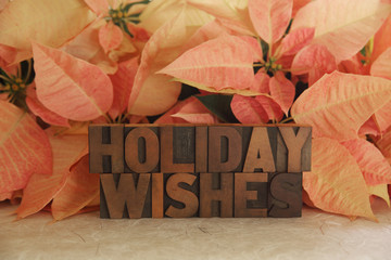 poinsettia holiday wishes