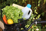 Faires ses provisions à vélo - Transport vert poster