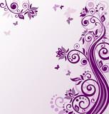 Fototapety Floral violet background