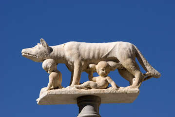The roman's wolf