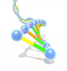 Colorful DNA helix strand