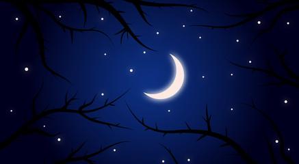 Beim Mondschein